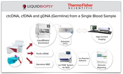 ion torrent workflow sle to sequence workflow liquidbiopsy 174