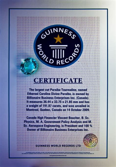 world record certificate template 50 best guinness world records images on world