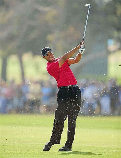 tiger woods swing from behind tiger woods golf swing sports quotes pinterest