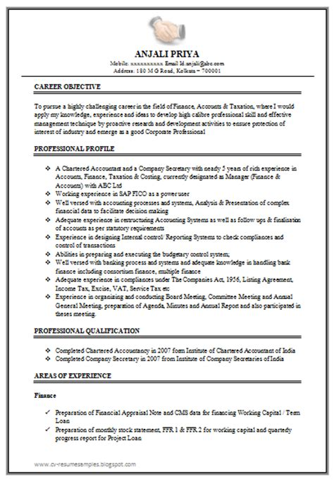 Resume Sle For Work Experience 10000 cv and resume sles with free