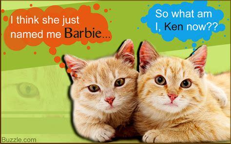 super cute names  pairs  pets