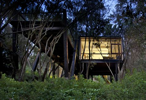 tree house windows modern tree house in curacav 237 chile