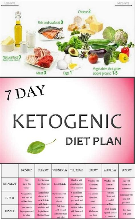 keto diet meals 21 day ketogenic meal plan for weight loss books ketogenic diet 7 day ketogenic diet meal plan diy