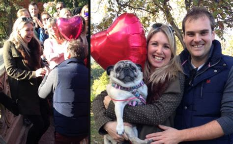 pug marriage 16 pugs help a propose marriage the barkpost