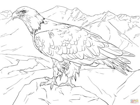 coloring pages alaska animals bald eagle from alaska coloring page free printable