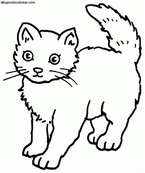 ragdoll cat coloring page 89 dibujos de gatos para imprimir y colorear colorear