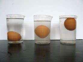 experimento infografia del huevo en agua salada experimento casero huevo flotante