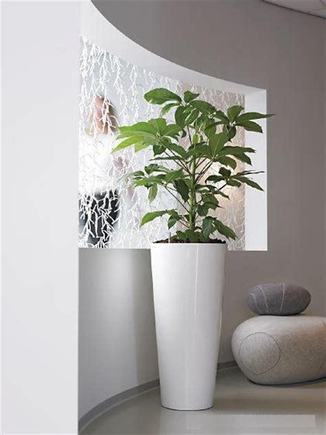 large indoor plant pots melbourne indoor planters melbourne