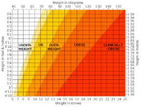 Doctors use the body mass index bmi as a simple way of assessing