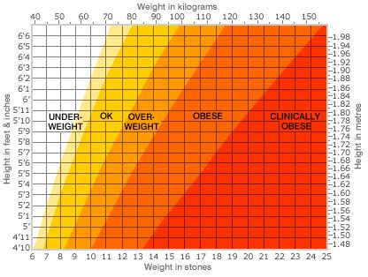 Easy To Read Bathroom Scales Bbc News Health Calculate Your Body Mass Index
