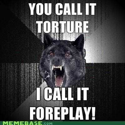 Wolf Memes - insanity wolf meme memes