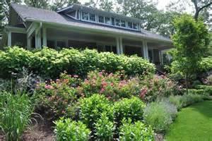 hydrangeas front yard landscaping planting a sloped front yard bushes hydrangeas garden