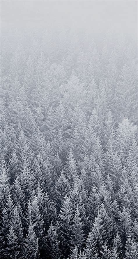 wallpaper for iphone 5 winter 10 free snowy iphone wallpapers premiumcoding