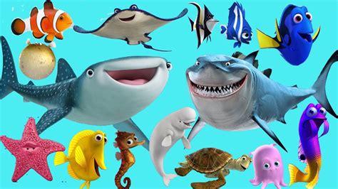 imagenes animales de mar sonidos de animales del mar para ni 241 os zaza tv youtube