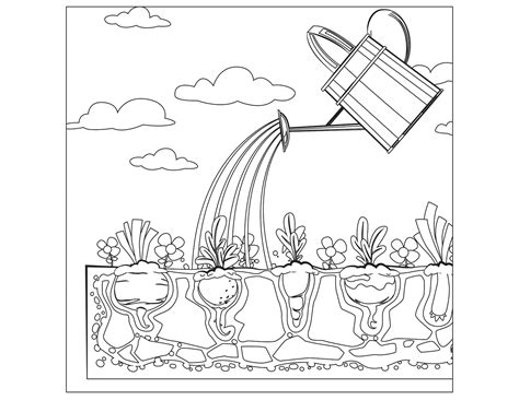 Animals Eating Coloring Pages Vegetable Garden Animals Vegetable Garden Coloring Pages