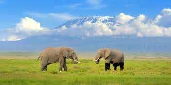 Small Kitchen Islands Amboseli National Park Saa Vacations