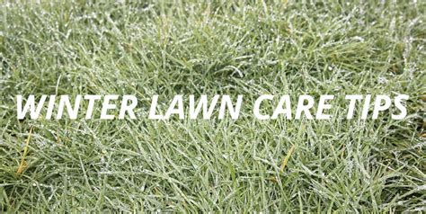 winter lawn care winter lawn care is your grass prepared for spring