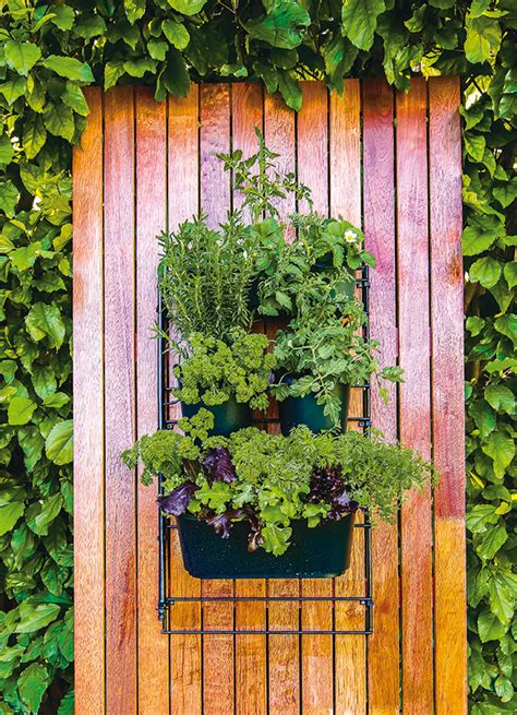 Wall Mounted Herb Garden by Wall Mounted Planting Kit Holman Industries