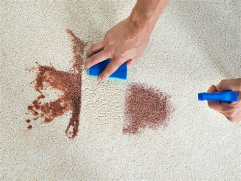 Rug Cleaning Arbor by Carpet Cleaning Arbor 28 Images It Up Cleaning Service