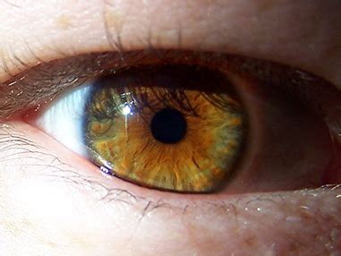 what is the rarest eye color rarest eye color