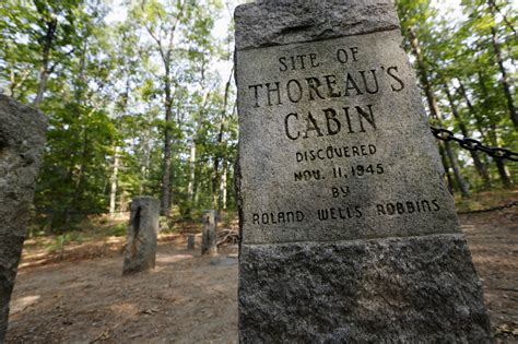 walden book house thoreau s experiment in simplicity and solitude inspires