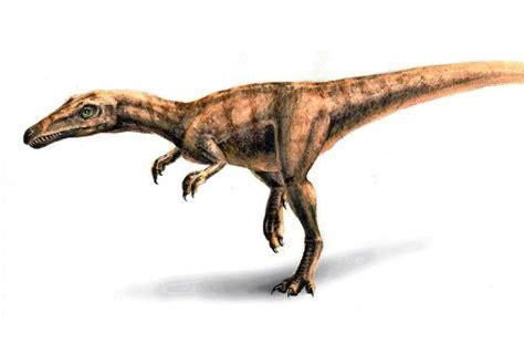 wann starben die dinos aus biologie der langsame tod der dinosaurier web wissen
