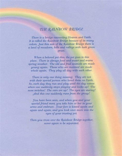rainbow bridge poem for dogs rainbow bridge poem all dogs go to heaven