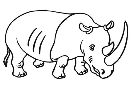 free printable rhinoceros coloring pages for