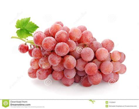 imagenes de uvas con mensajes uva de vino rosado imagen de archivo imagen de ornamento