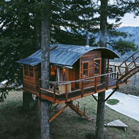 treetop tiny houses with skatepark