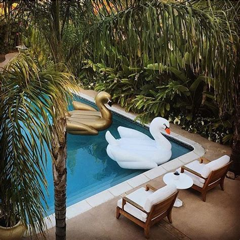 Pelung Floating Pool Swan Angsa gold swan pool float traditional pool floats and the o jays