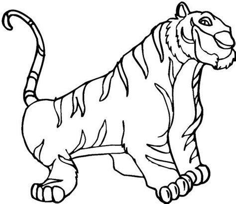 coloring pages siberian tiger tigers coloring pages coloring kids