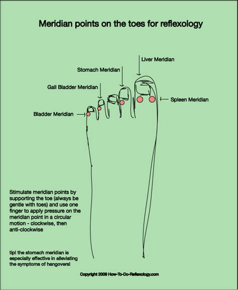 toe diagram reflexology foot map diagrams charts including step by