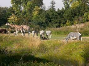 jardin zoologique de la ville de lyon