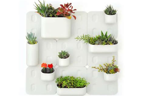 vertical gardening kit brings nature  urban