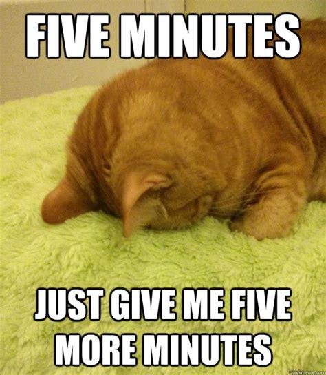 Monday Cat Meme - please just let me sleep funny memes pinterest cat