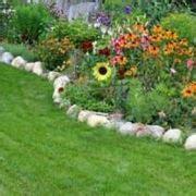 fiori perenni da bordura bassa fiori da bordura piante perenni fiori da bordura