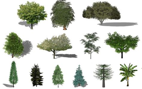 imagenes hdri para keyshot refresh the greenery in your renders with this free