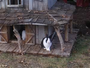 kaninchen haus rabbit play area rabbit habitat it s all about