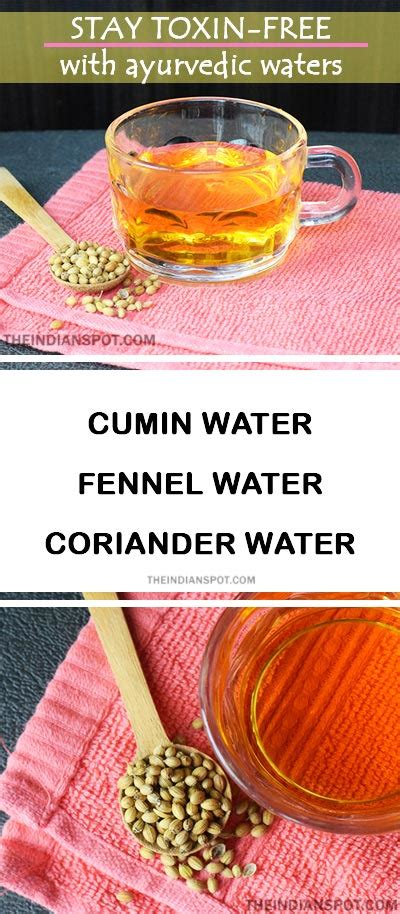 Recipe Detox Water Fennel by Stay Toxin Free With Cumin Fennel And Coriander Water
