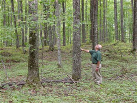 upper michigan land management  wildlife service