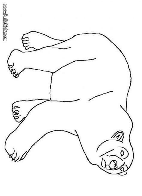 cute pictures of printable coloring pictures of polar
