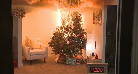 this is how quickly a dry christmas tree will burn your