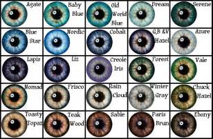 exotic color names mod the sims masterpiece eyes