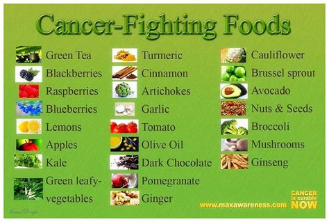 cancer diet 16 cancer facts types causes diet prevention and more