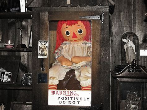 haunted doll in museum annabelle doll to be moved tonight live sleep terror