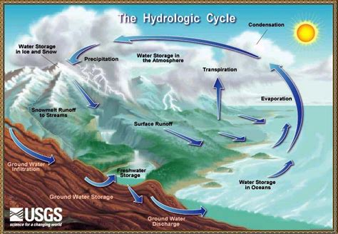 water cycle images the water cycle
