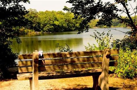 things to do in clinton il weldon springs state park picture of weldon springs
