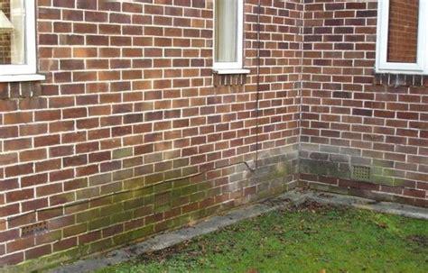 umidità muro interno umidit di risalita rimedi excellent umidit risaliente su