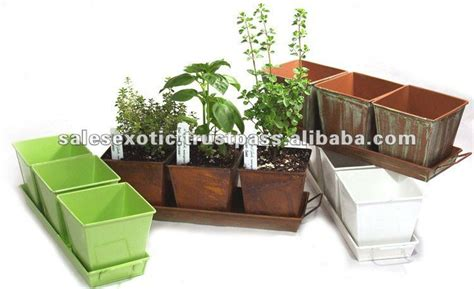 kitchen herb planter indoor herb planter eatwell101 kitchen herb planter kit herb growing kit container garden